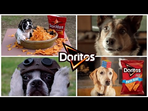 The Best 32 Most Funny Doggy Doritos Super Bowl Commercials of All Time